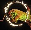 Цирки в Спасск-Рязанском