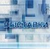 Выставки в Спасск-Рязанском